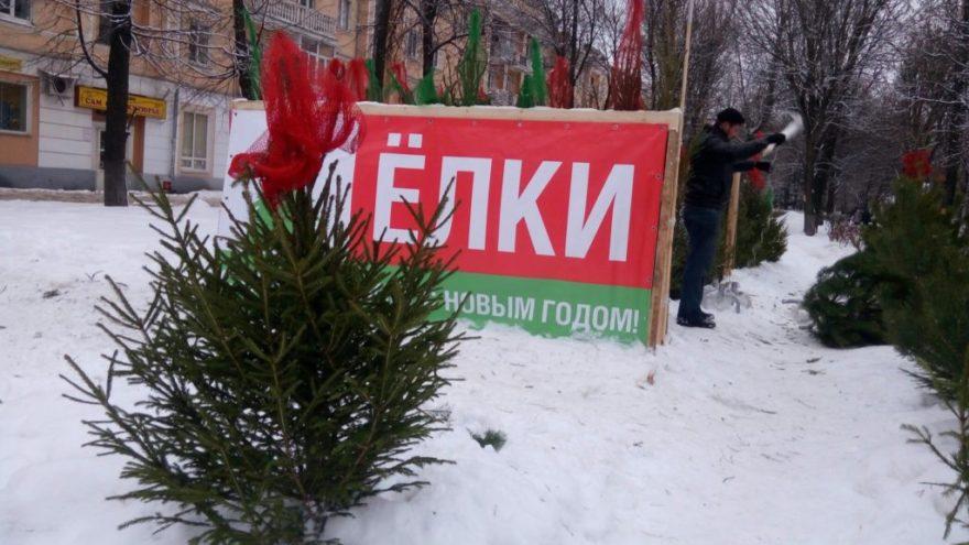 Чиновники спорят с УК по поводу установки новогодней ёлочки в Тверской области