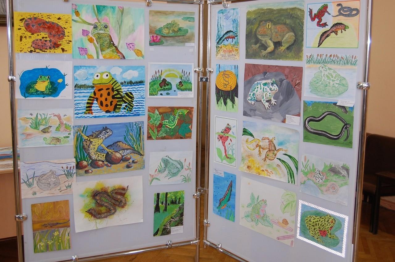 Дети рисуют красную книгу Тверской области