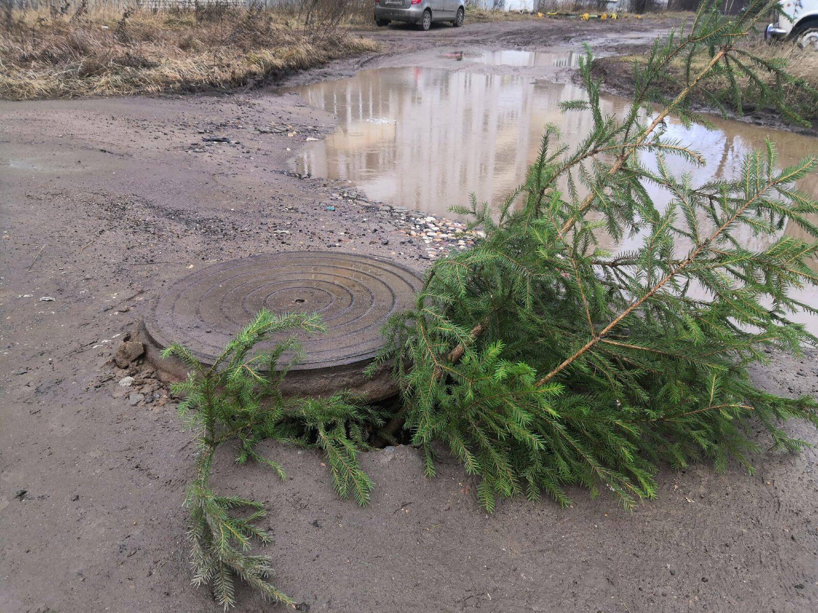 В Твери провал в земле заткнули новогодней елкой