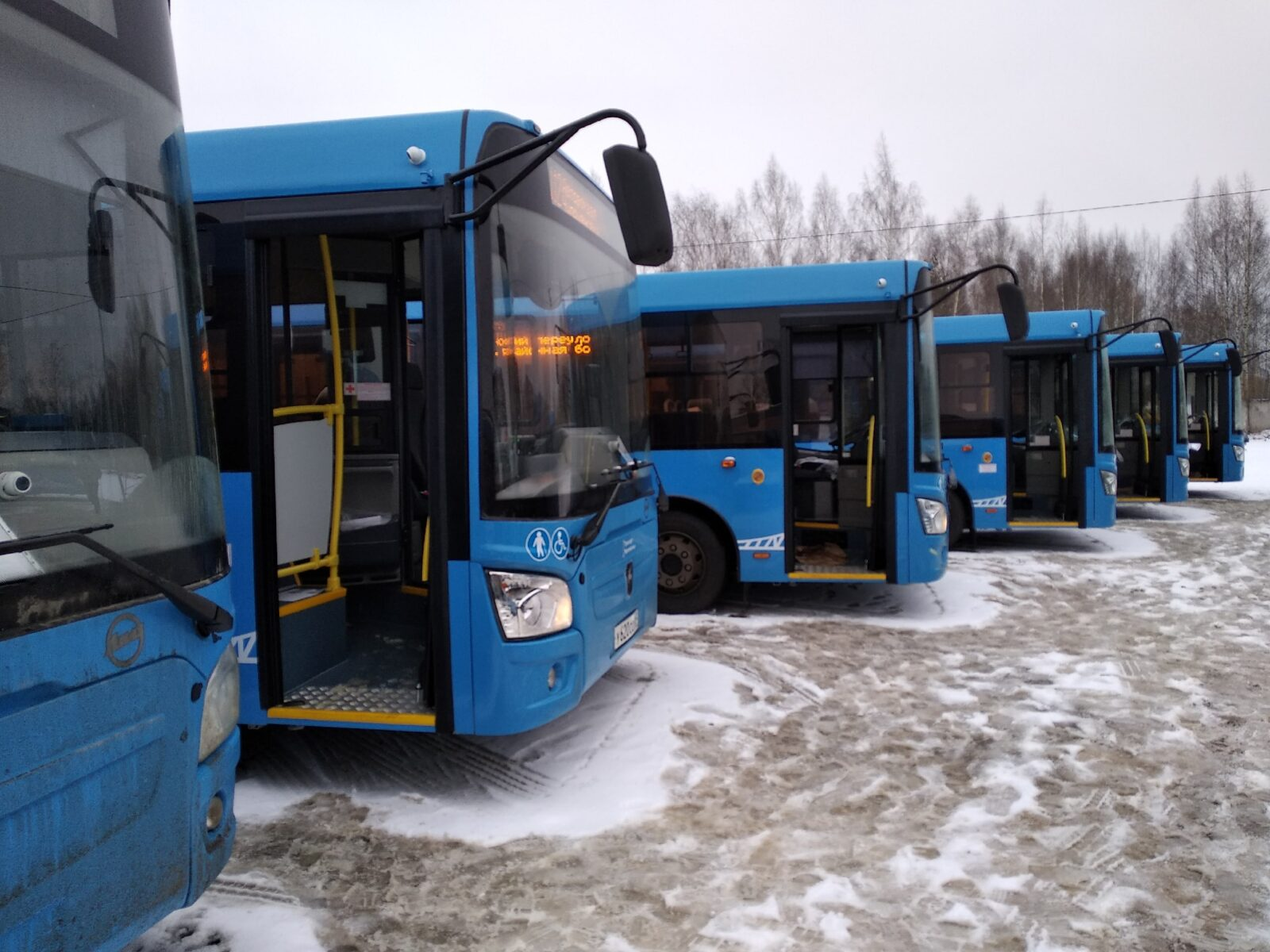 Новые автобусы для Твери ждут своего выезда. Фото