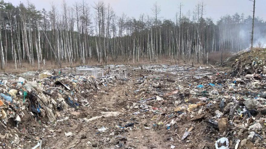 Житель Конаково нанес окружающей среде ущерб в 60 миллионов рублей