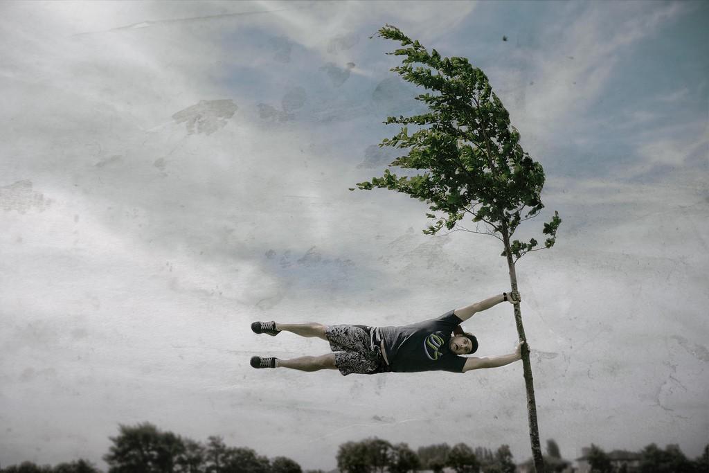 МЧС предупреждает о сильном ветре в Тверской области