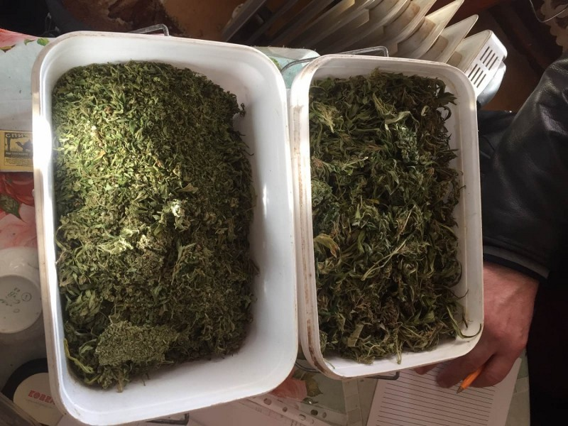 У жителя Тверской области нашли два ящика марихуаны