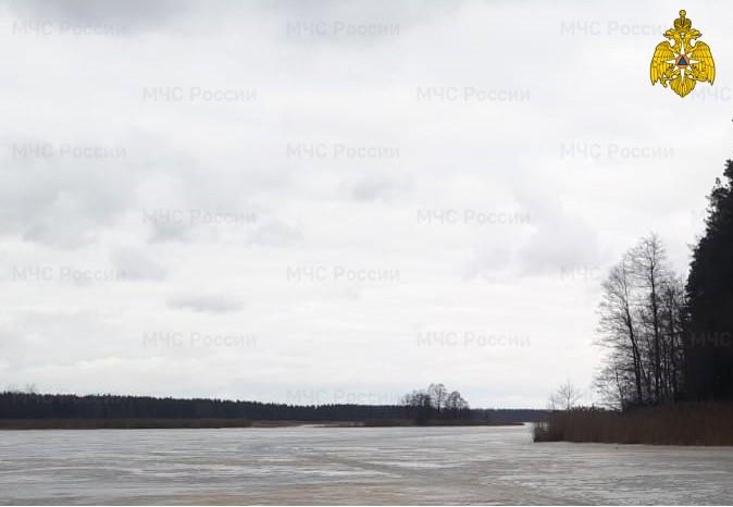Из реки в Тверской области достали тело утонувшего мужчины