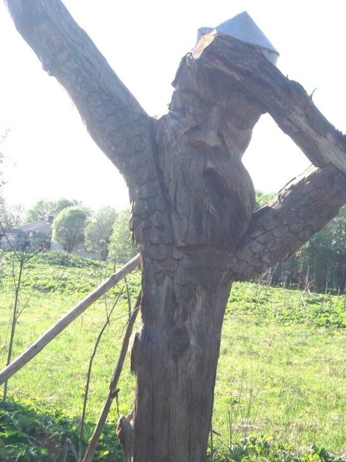 Из деревни в Тверской области пропал защитник