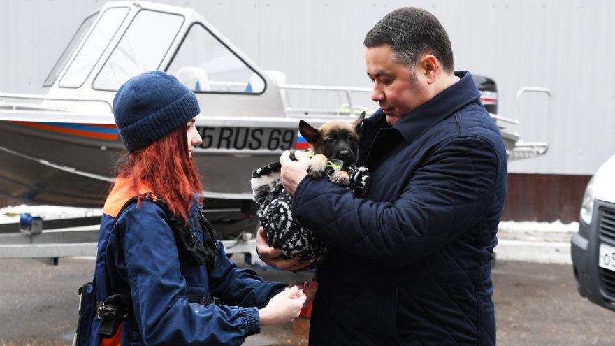 Игорь Руденя подарил тверским спасателям щенка бельгийской овчарки