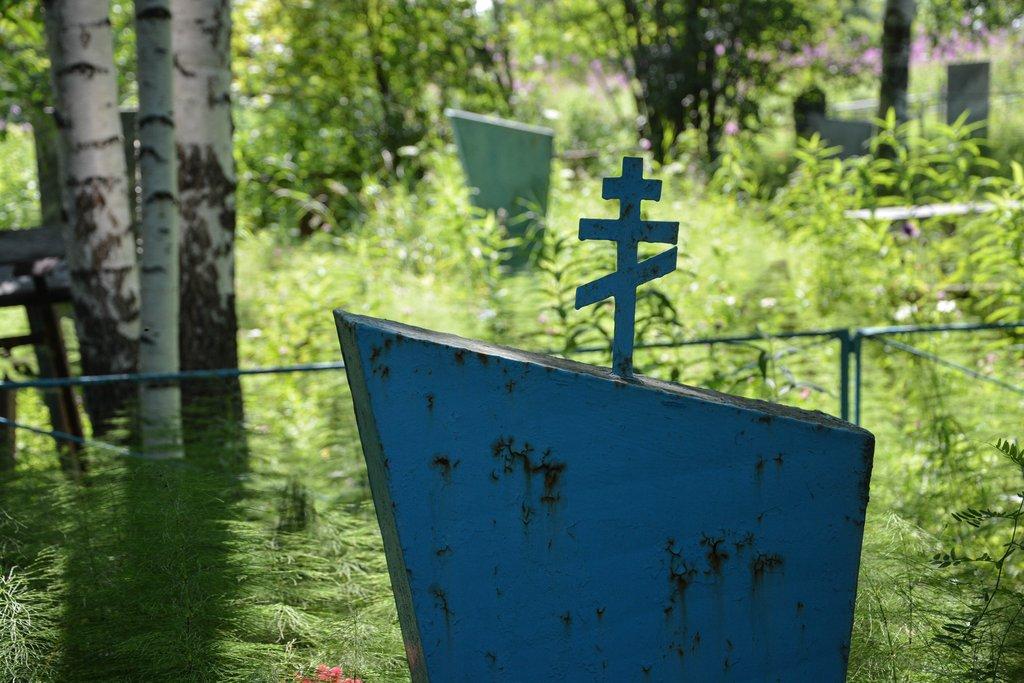 В Тверской области нашли пять незаконных кладбищ
