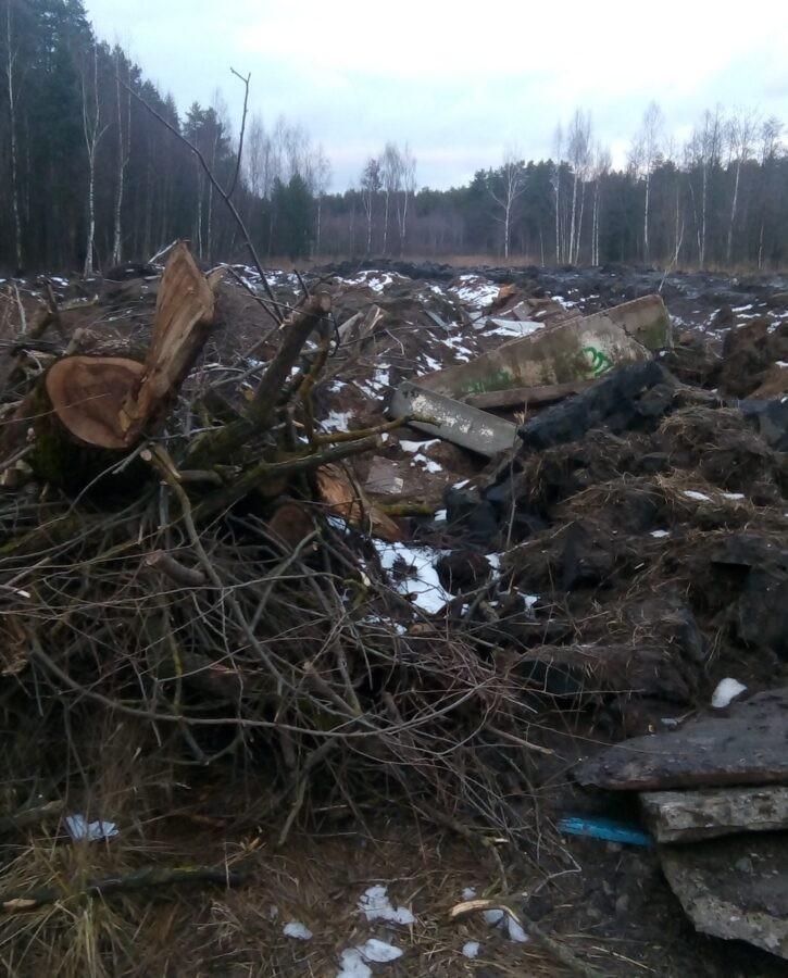 В Тверской области на выезде из города нашли кучу металлолома