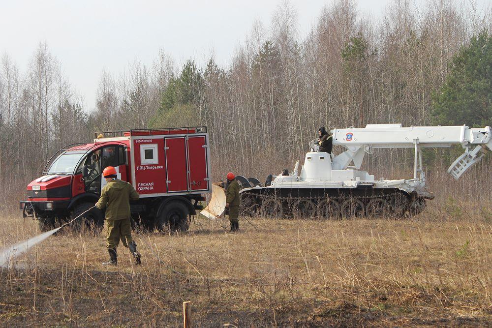 В Тверской области могут начаться сильные лесные пожары