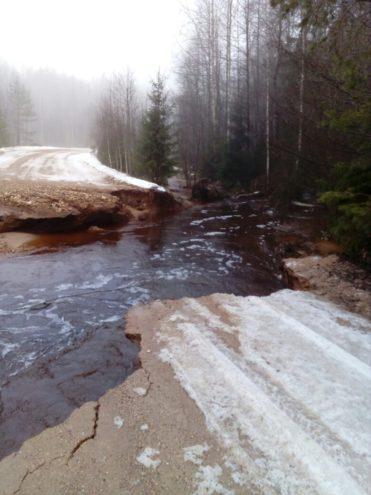 Потоком воды размыло дорогу в Тверской области