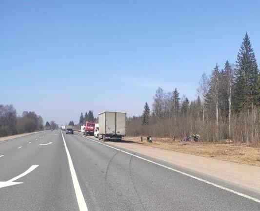 В Тверской области на трассе М-10 иномарка врезалась в дерево
