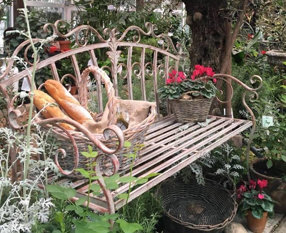 Тверской ботанический сад приглашает на виртуальный квест