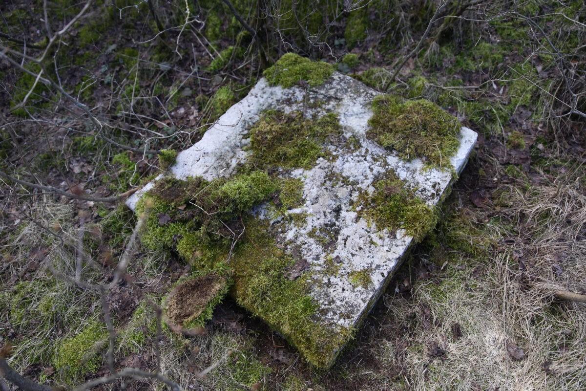 """В Твери строители рассказали, что не будут """"откапывать холеру"""" на старом кладбище"""
