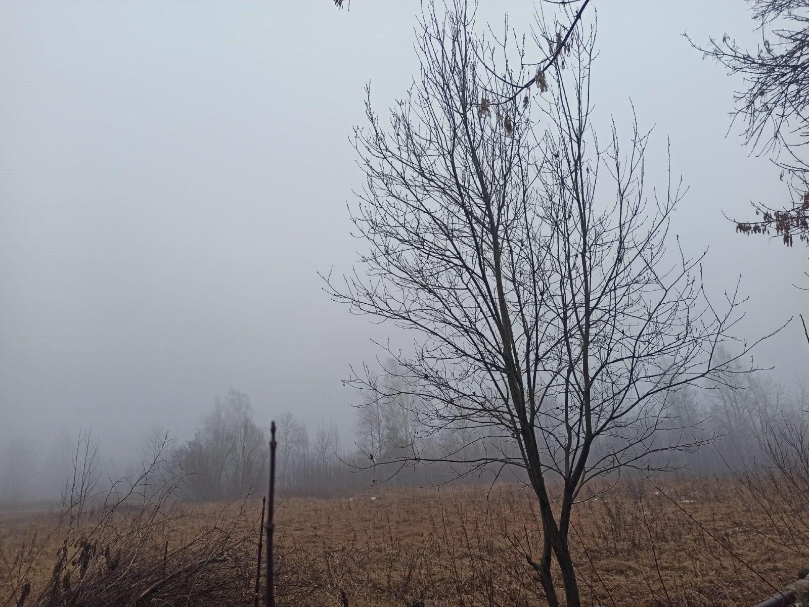 На Тверь опустился плотный туман