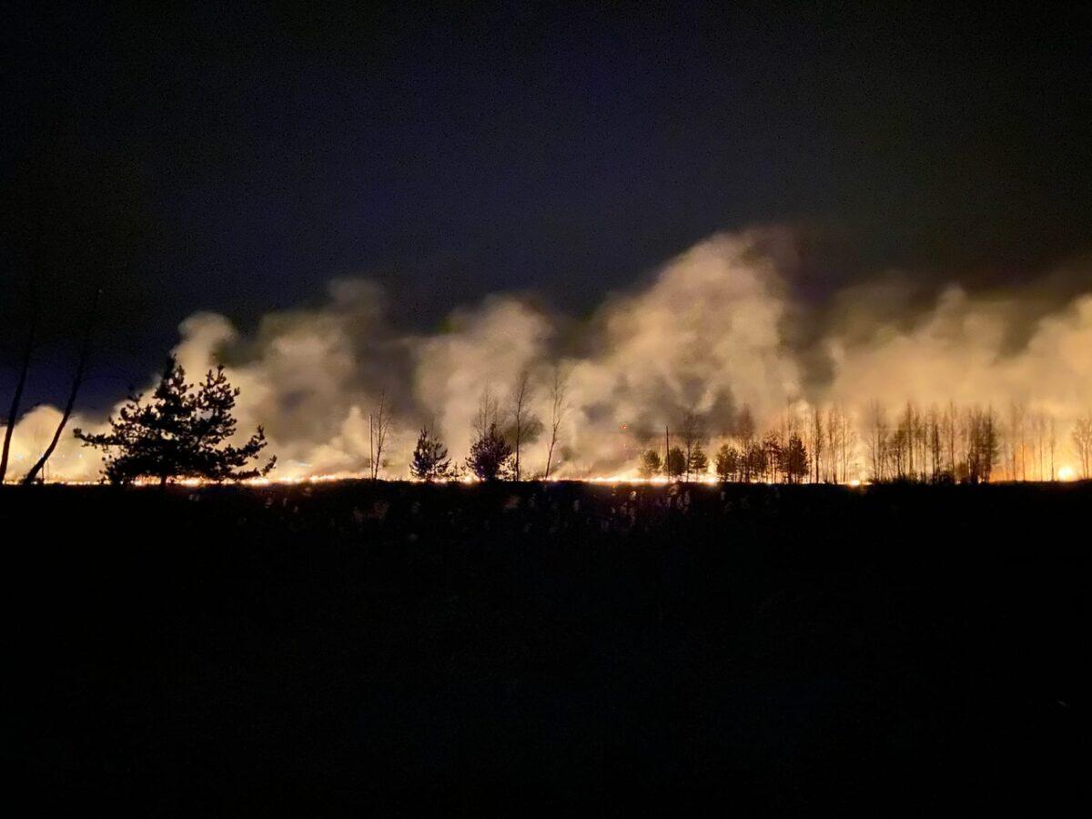 В Тверской области на окраине города загорелось болото