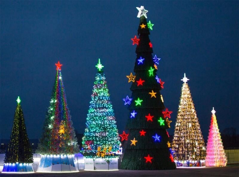 В Тверской области молодым людям простили кражу ограждения новогодней ёлки