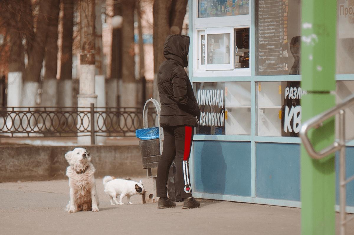 Фотопрогулка по Твери: как живет город на карантине
