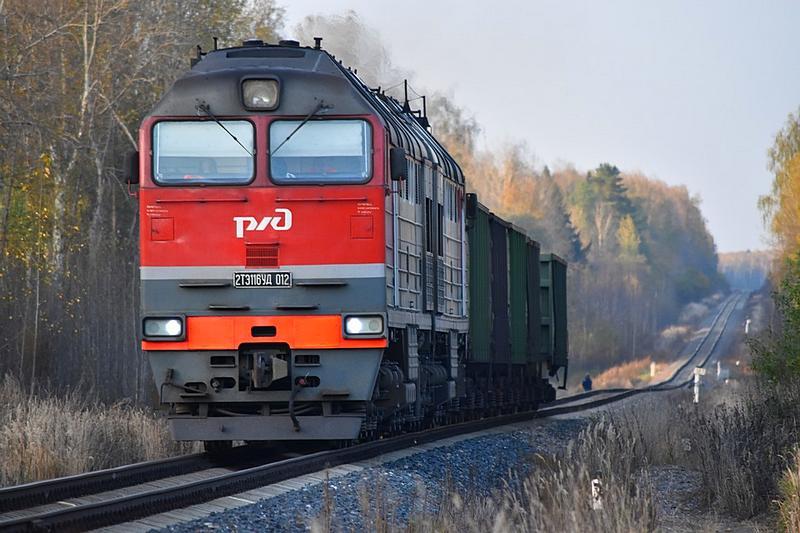 В Тверской области помощник машиниста слил с тепловоза 390 литров топлива