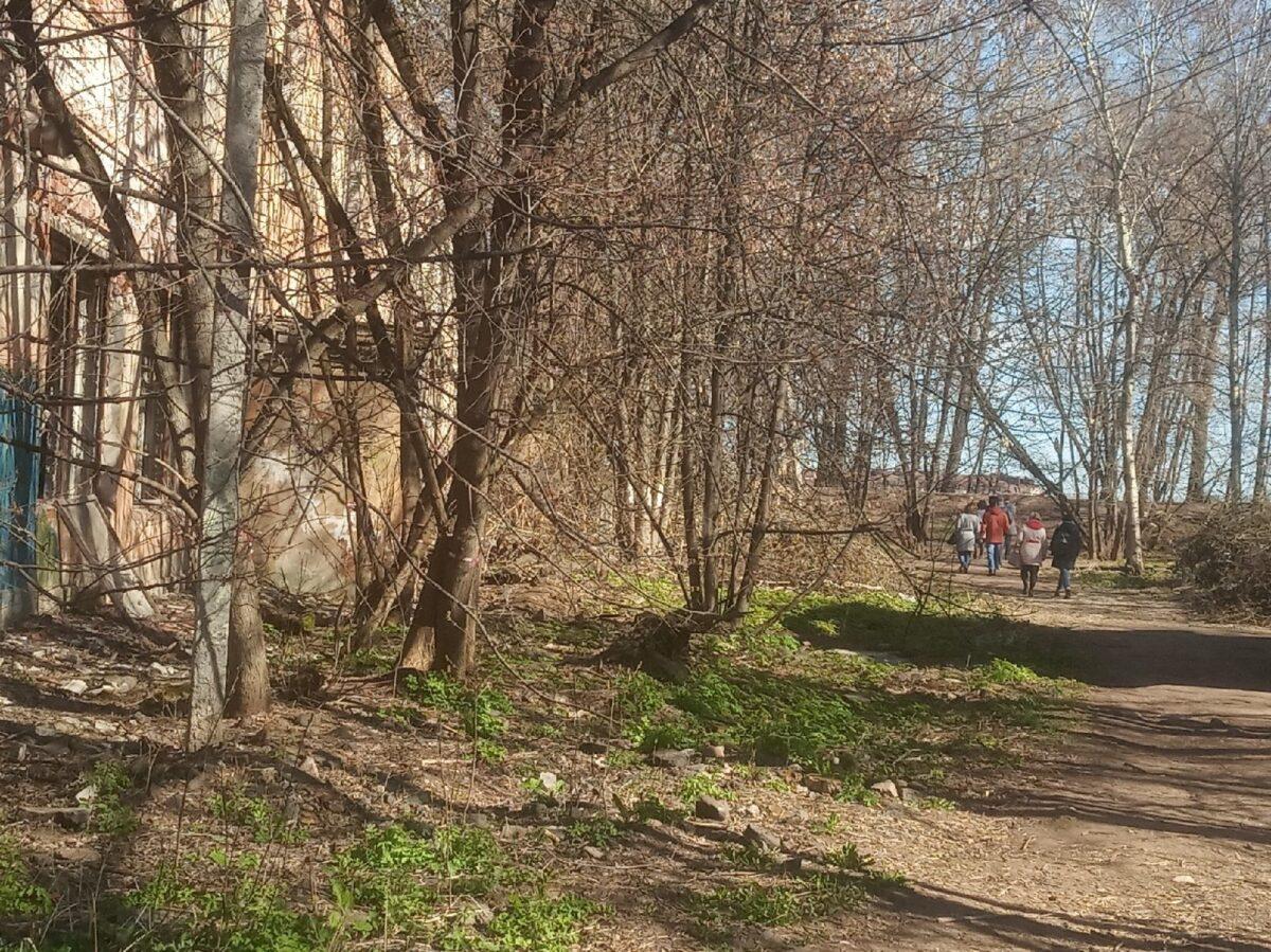 """В тверском парке """"Воксал"""" начали наводить порядок"""