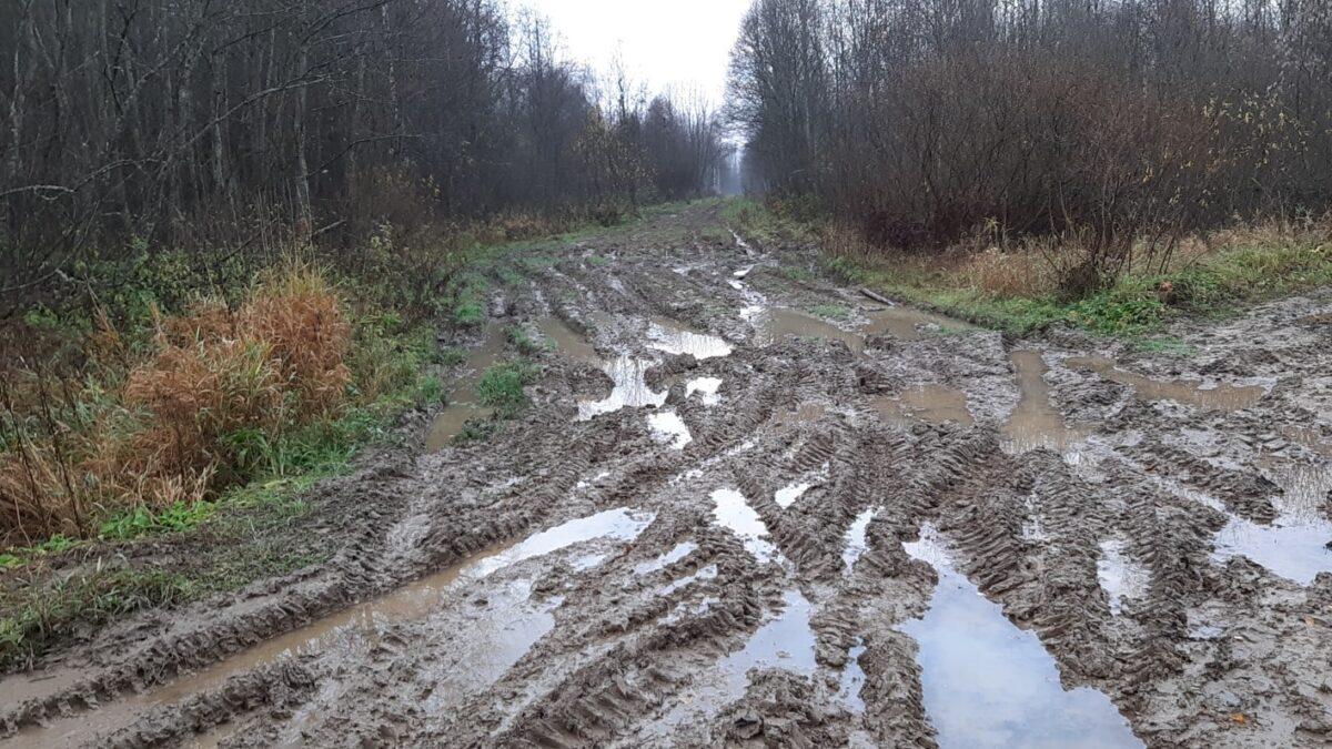 Участники ржевского сообщества в соцсетях добились ремонта дороги