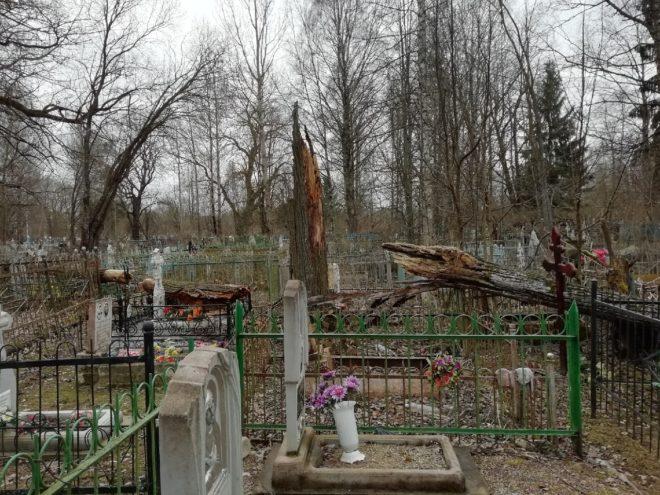 Высокие цены заставили тверских чиновников идти на кладбище