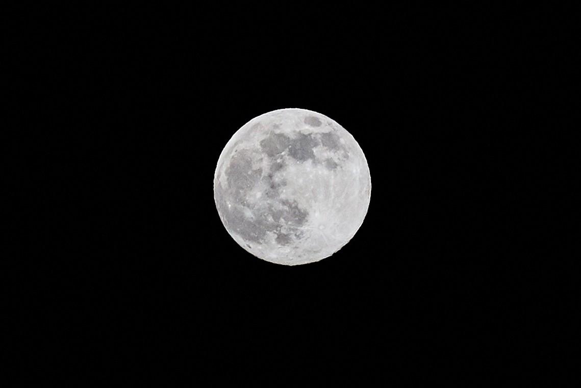 Жители Тверской области увидели огромную розовую Луну