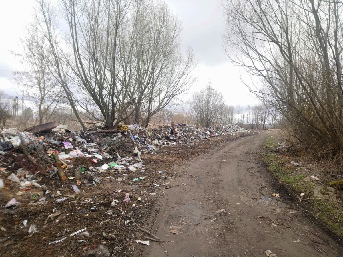 Жителей Тверской области обеспокоили свалки возле деревень