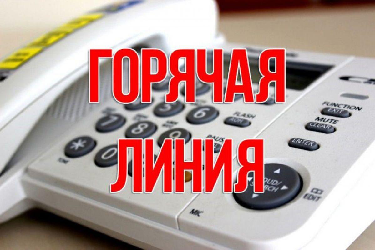 В Тверской области «горячая линия» для предпринимателей будет работать даже в праздники