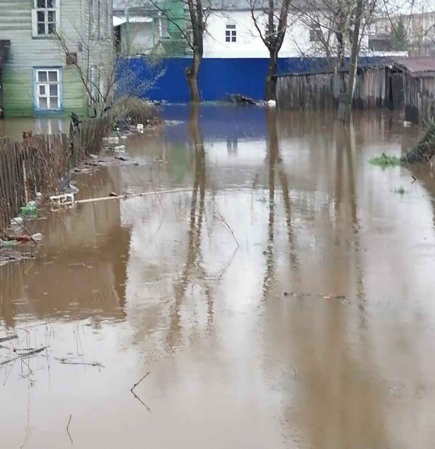Многострадальный дом Ожегова в Тверской области теперь еще и затопило