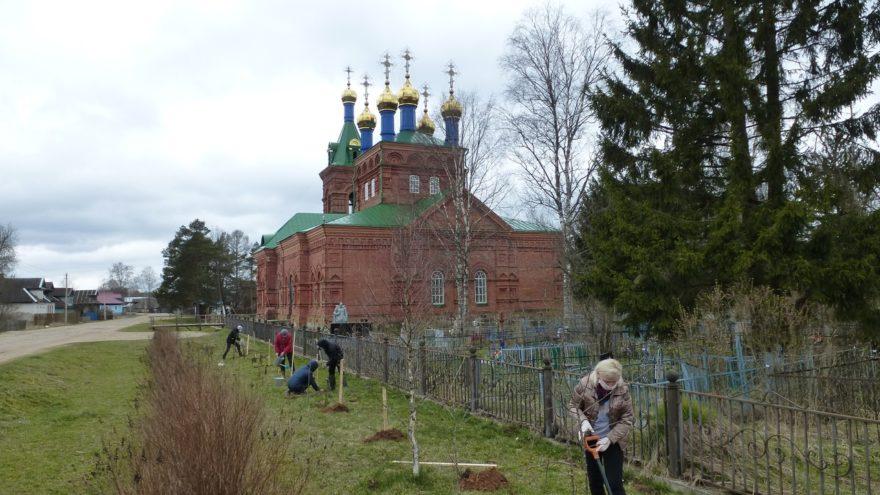 У восстанавливаемого храма в Тверской области высадили яблони