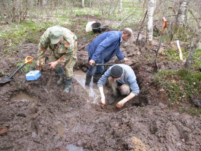 В тверском болоте нашли останки солдата и записку карандашом