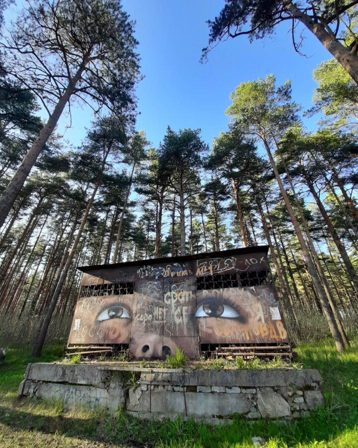 Тверская художница творит красоту на заброшенных зданиях