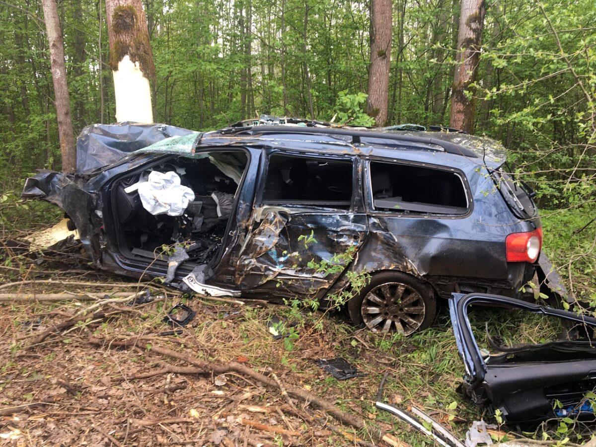 В Тверской области Фольксваген врезался в дерево