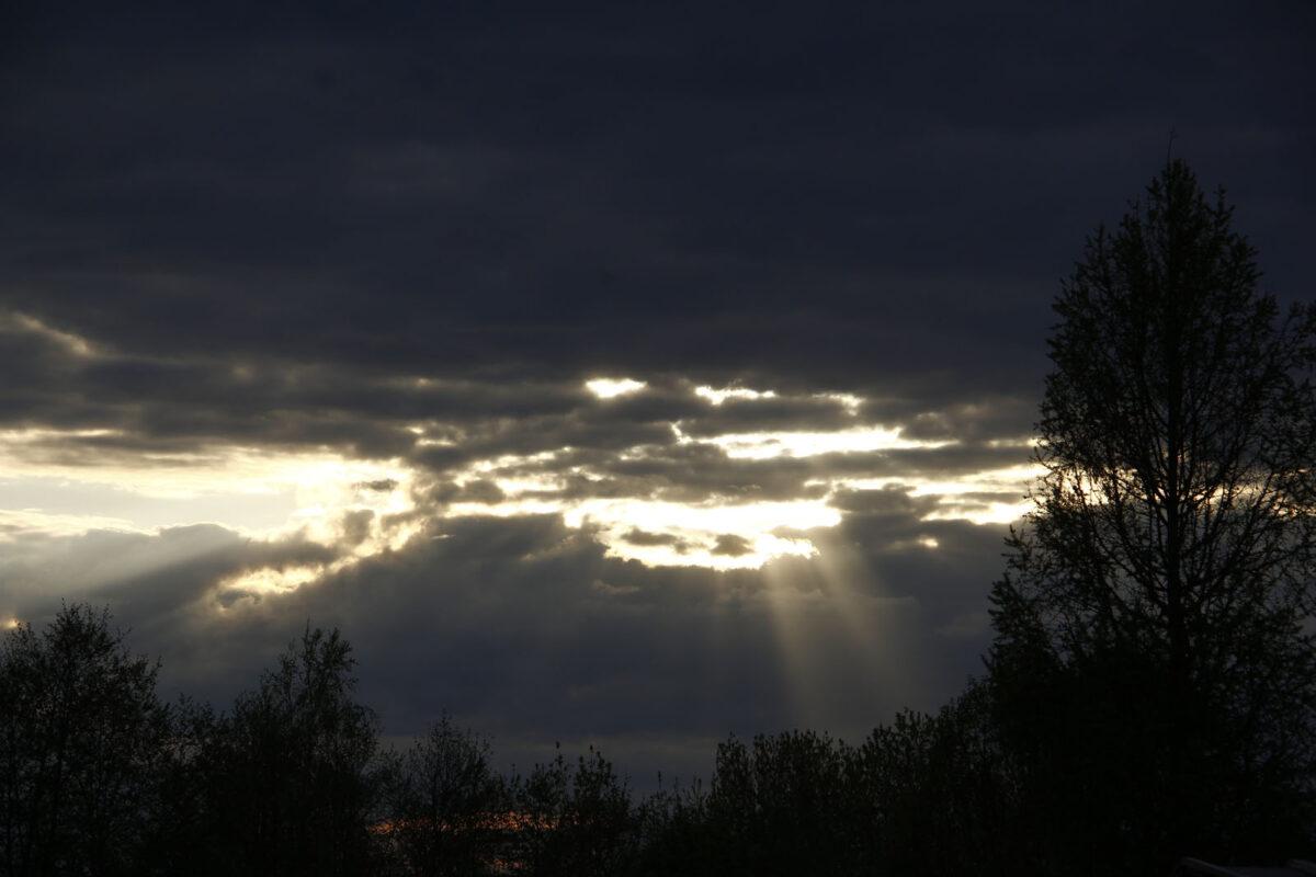 В Тверскую область возвращаются дожди