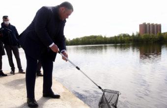 11 миллионов мальков рыб в Тверской области ушли в свободное плавание