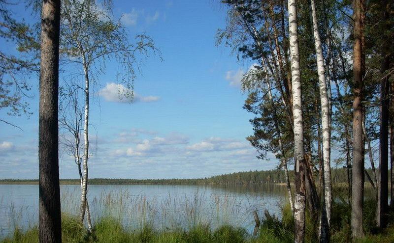 Границы ещё трёх особо охраняемых природных территорий утвердили в Тверской области