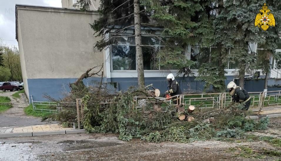 В Твери пожарные пилят упавшие деревья
