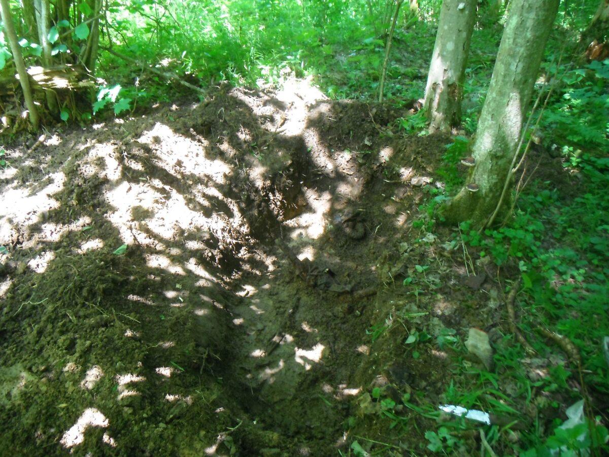 Останки еще одного солдата Великой Отечественной нашли в Тверской области