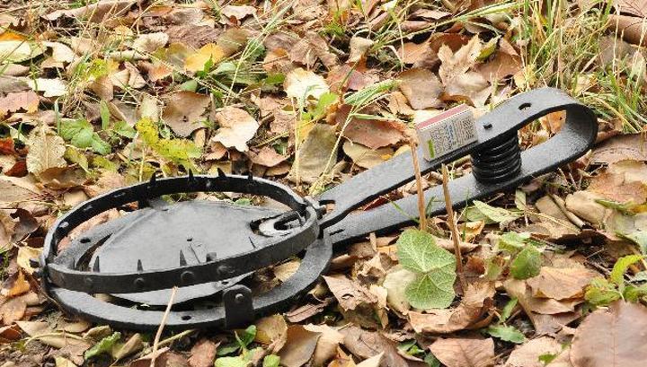 В Тверской области заблокировали 5 сайтов для браконьеров