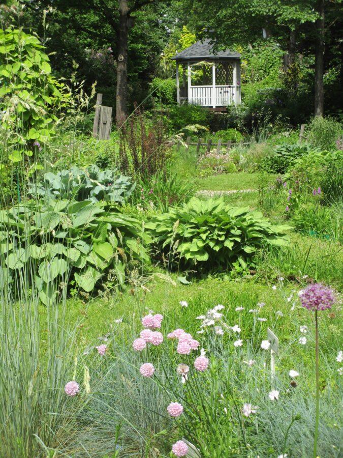 Парк ботанического сада в Твери снова открыли для прогулок