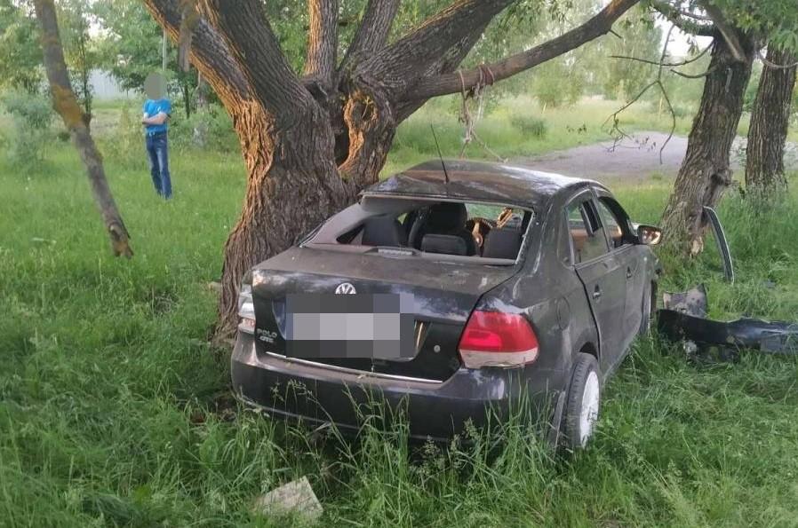 В Тверской области водитель врезался в дерево