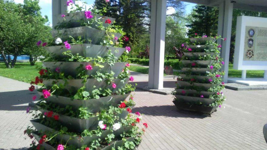 Больше зелени и цветов: в Твери украшают зоны отдыха