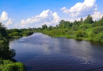 В Тверской области в реке утонула 13-летняя девочка