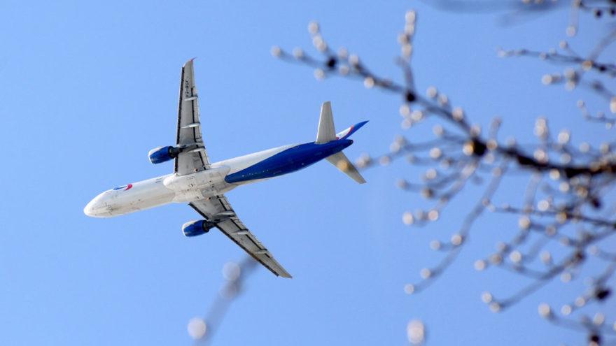 «Уральские авиалинии» помогли тверским журналистам