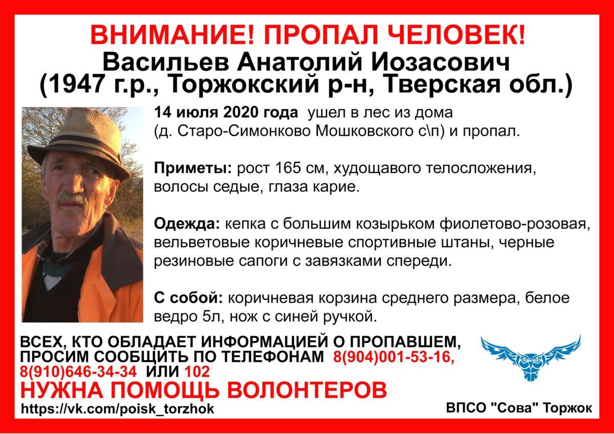В лесу Тверской области четвёртый день ищут дедушку с корзинкой