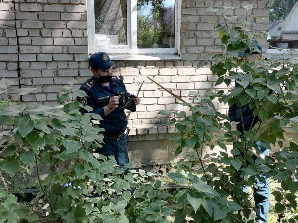 В Тверской области сотрудники МЧС спасли обезвоженного стрижа