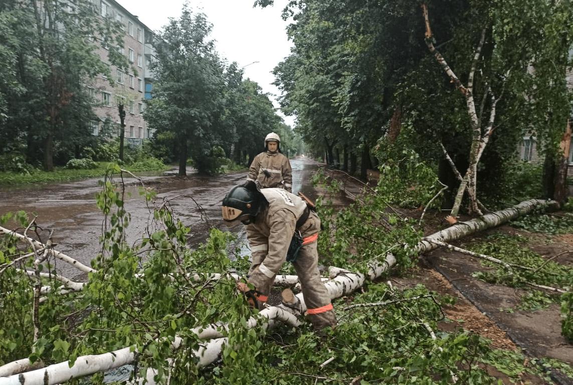 МЧС предупреждает о новой буре в Тверской области