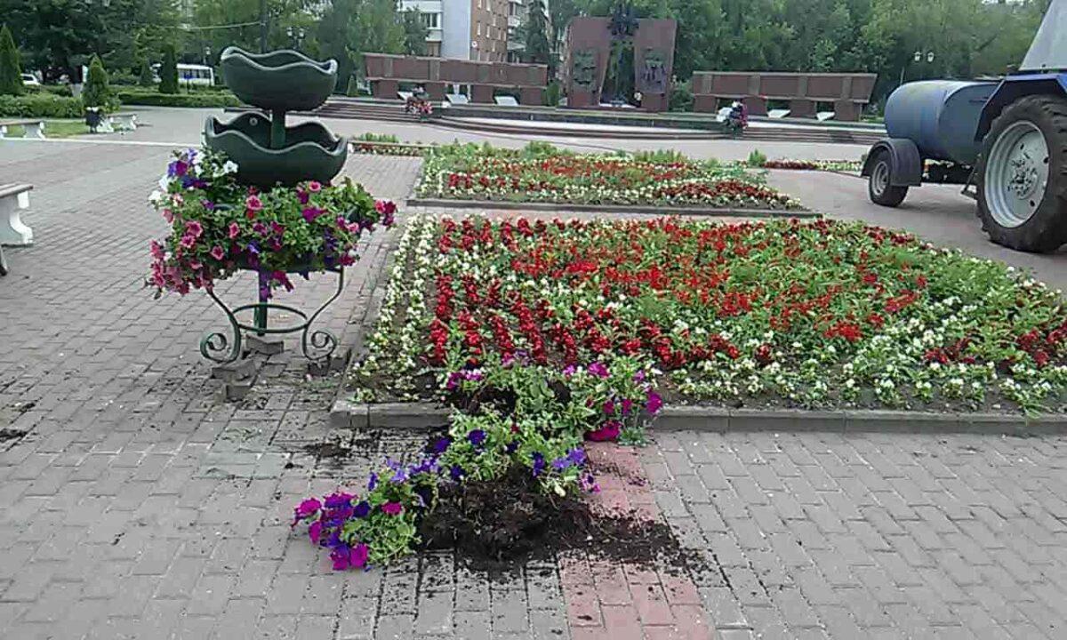 Вандалы повалили цветник возле Смоленского захоронения в Твери