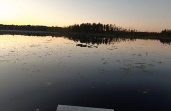 В Тверской области пенсионер поехал на рыбалку и утонул