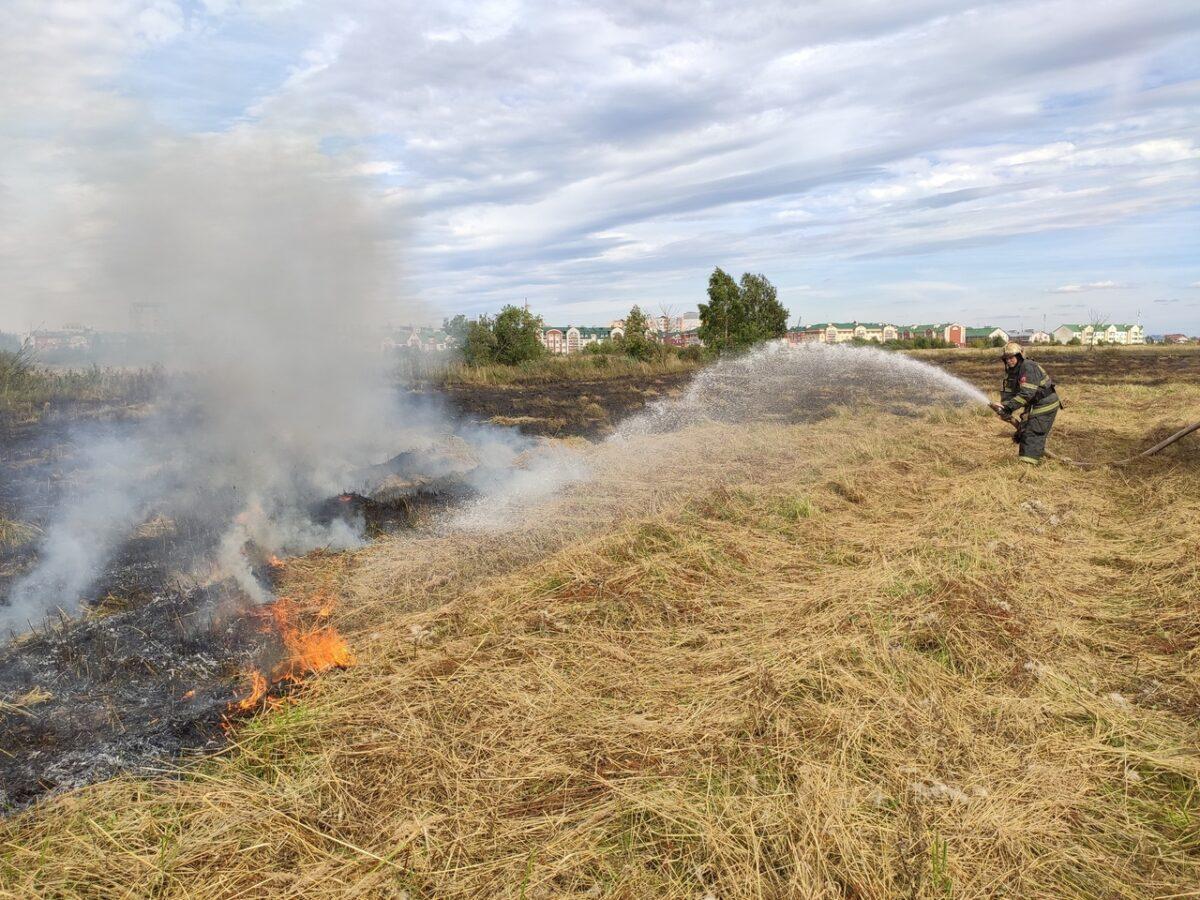 """Опубликованы фото, как в Твери горит поле в """"Южном - Д"""""""